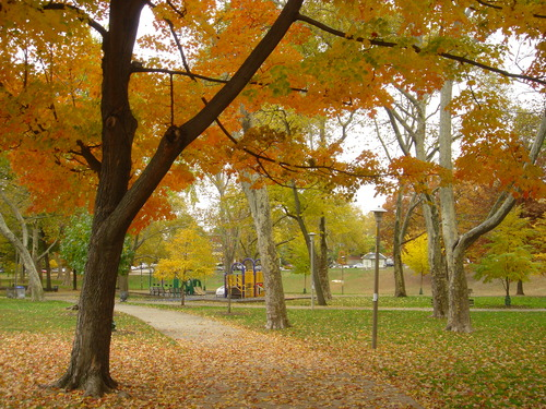 Clark Park Today